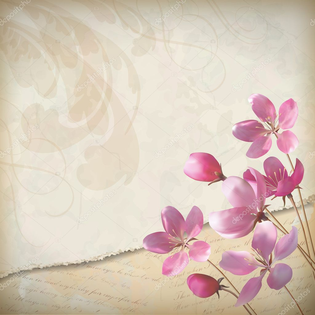 Realistic floral vector spring design with elegant pink blooming flowers, ragged edge of old paper sheet, decorative elements and classic calligraphic text on vintage, grunge background in retro style