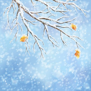 Winter background with snow-covered frozen tree brunches, last autumn leaves, snowfall on a blue bokeh backdrop. Snowy weather vector design. Christmas winter landscape greeting card