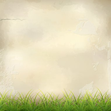 Green Grass on Plaster Wall Abstract Background