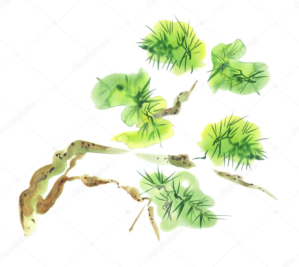 Pine Tree Watercolor Asian Style Painting