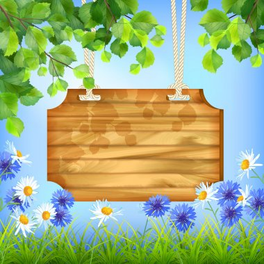 Wooden Sign Board Summer Day Natural Background