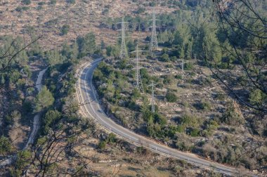 The top view on the road laid through a large forest, Israel