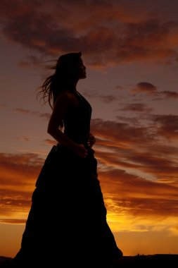 Woman silhouette formal dress hair blow