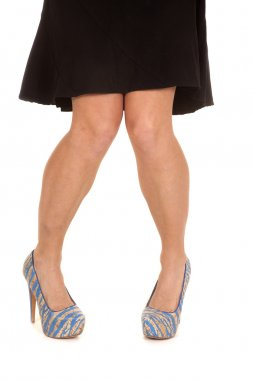 Woman legs blue tan shoes toes pointed