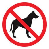 žádné znamení pes