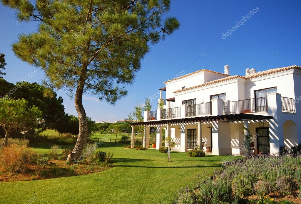 White luxury villa, lawn and pine