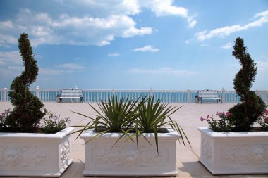 Terrace overlooking the sea, white balustrade, bench and boxwood