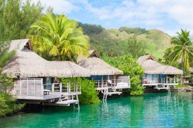 Honeymoon best destination