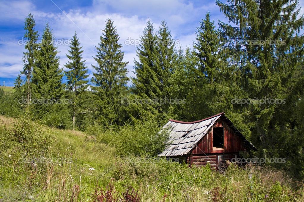 Het huis in het bos u2014 stockfoto © demions #12406245