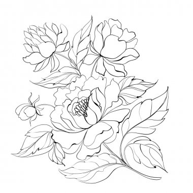 Ink Painting of Peony.