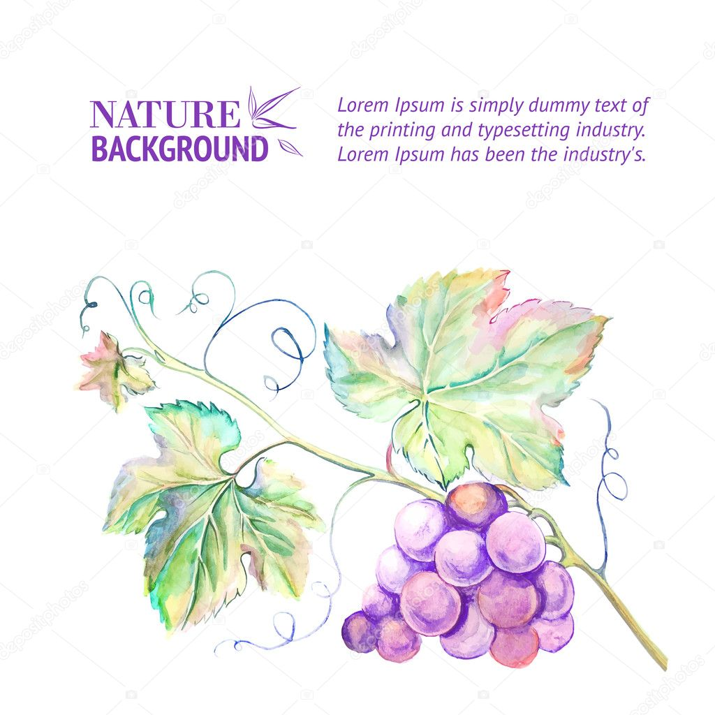 Card with grape leaves.