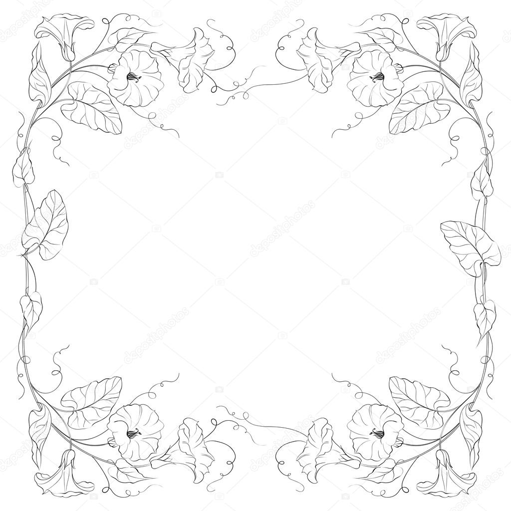 Flowers Frame of bindweed.