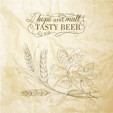 Golden wheat and hop on sepia
