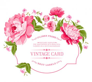 Luxurious invitation card of color peony flowers. Vector illustration. stock vector
