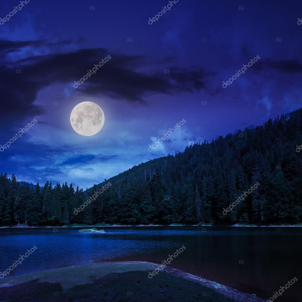 Фотообои сосновый лес и озеро возле горы ночью