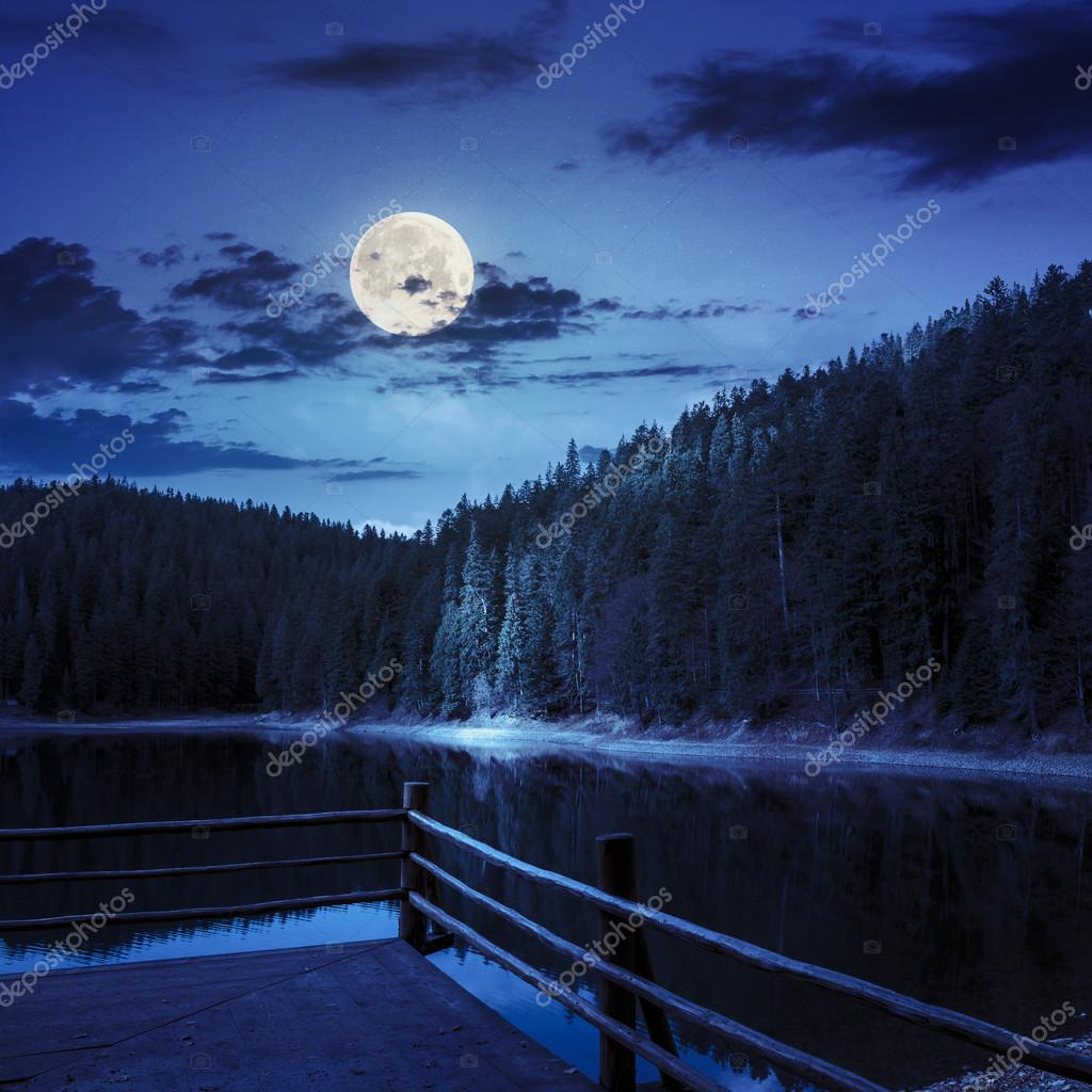 Фотообои pine forest and lake near the mountain at night