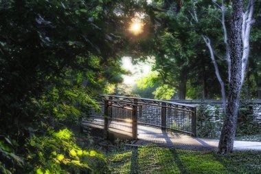 """Картина, постер, плакат, фотообои """"путь через ручей миннехаха на озере нокомис в миннеаполисе цветы природа программа"""", артикул 20940655"""