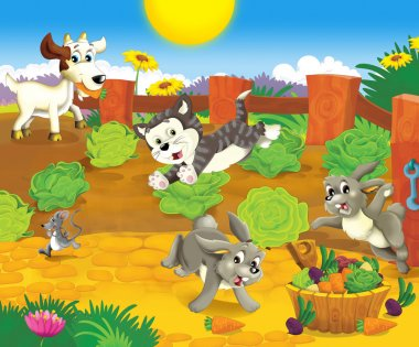 Animals at the lettuce field