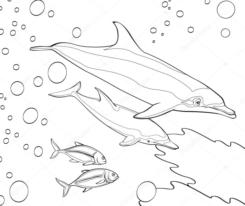 the coloring book dolphins coral reef illustration for the