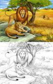 Safari - lvi - barevné stránky - ilustrace pro děti