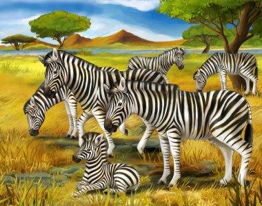 Safari - zebras - illustration for the children