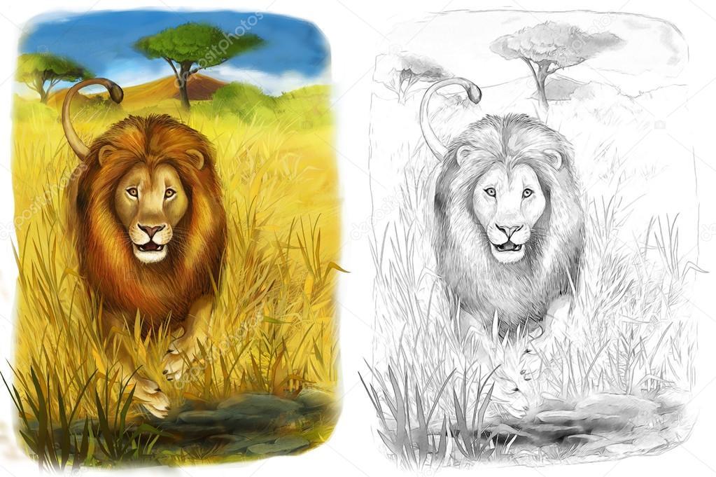 Safari - leones - página - ilustración para los niños para colorear ...