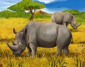 Fotografie Safari - Nashorn