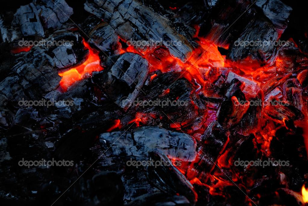 The wood coal burns on fire