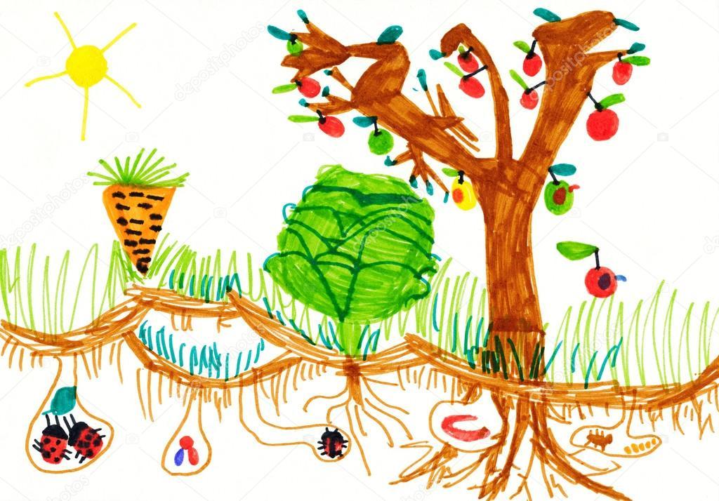 Detska Kresba Na Papire Kuchynske Zahrady Stock Fotografie