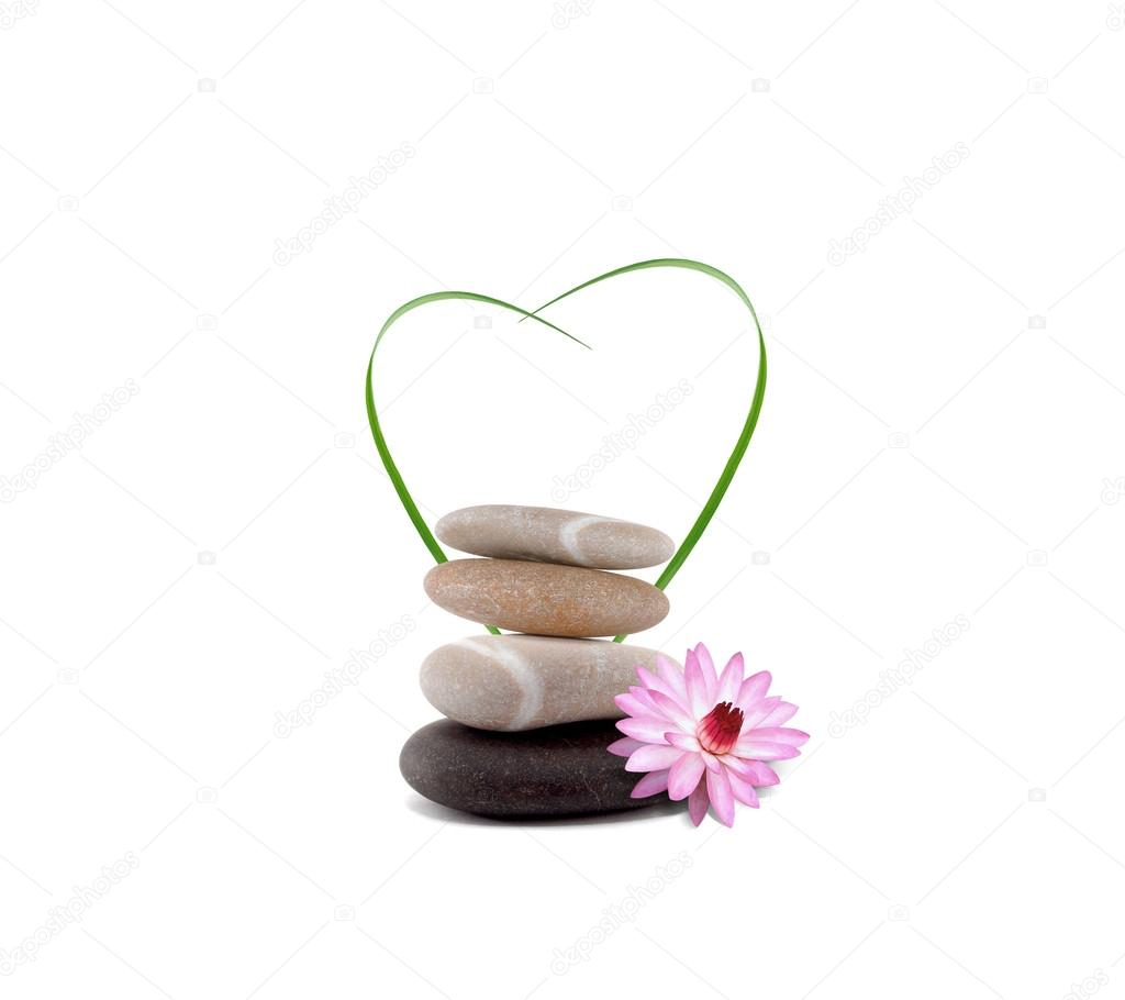 Orchid pebbles heart 03