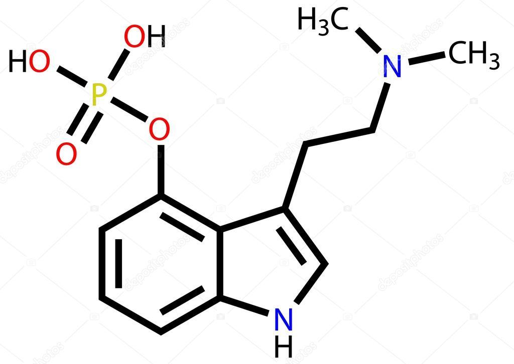 https://st.depositphotos.com/1723045/1325/v/950/depositphotos_13258742-stock-illustration-psilocybin-a-hallucinogen-found-in.jpg