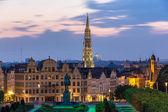 pohled na centrum města Brusel - Belgie