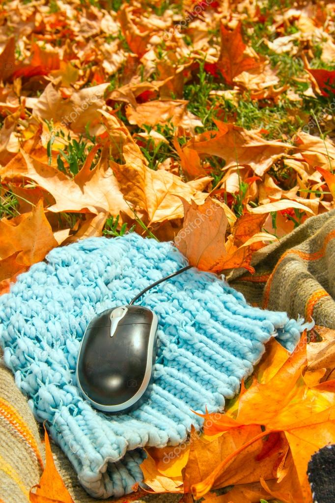 Computer mouse on leaves