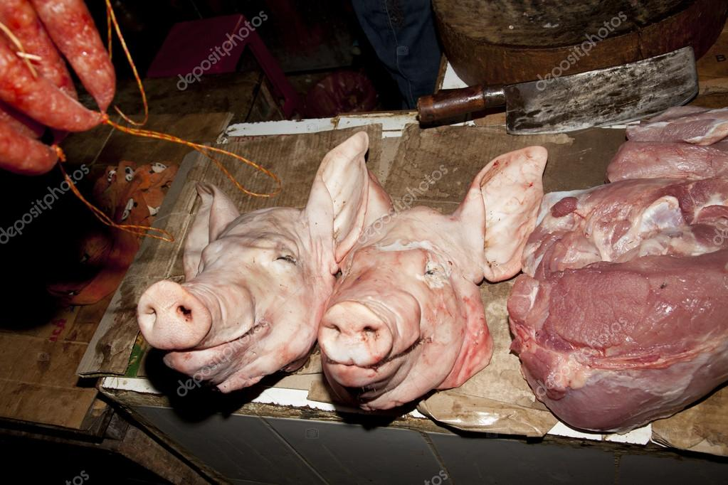 Schweine-Kopf — Stockfoto © markrhiggins #19038783