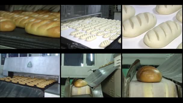 Manufacture of bread