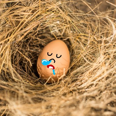 Chicken eggs with sleeping face in the bird nest