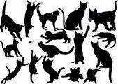 Fotografie Katze und Kätzchen Vektor-Silhouette auf weißem Hintergrund. mit Schnurrbart. gespeichert in Eps 10. geschichtet. voll editierbar