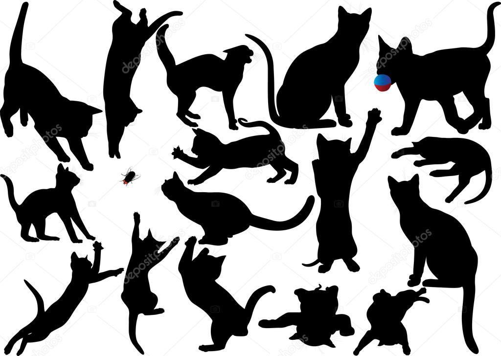 Vector Gato Bigote Gato Y Gatito Vector Silueta Sobre Fondo