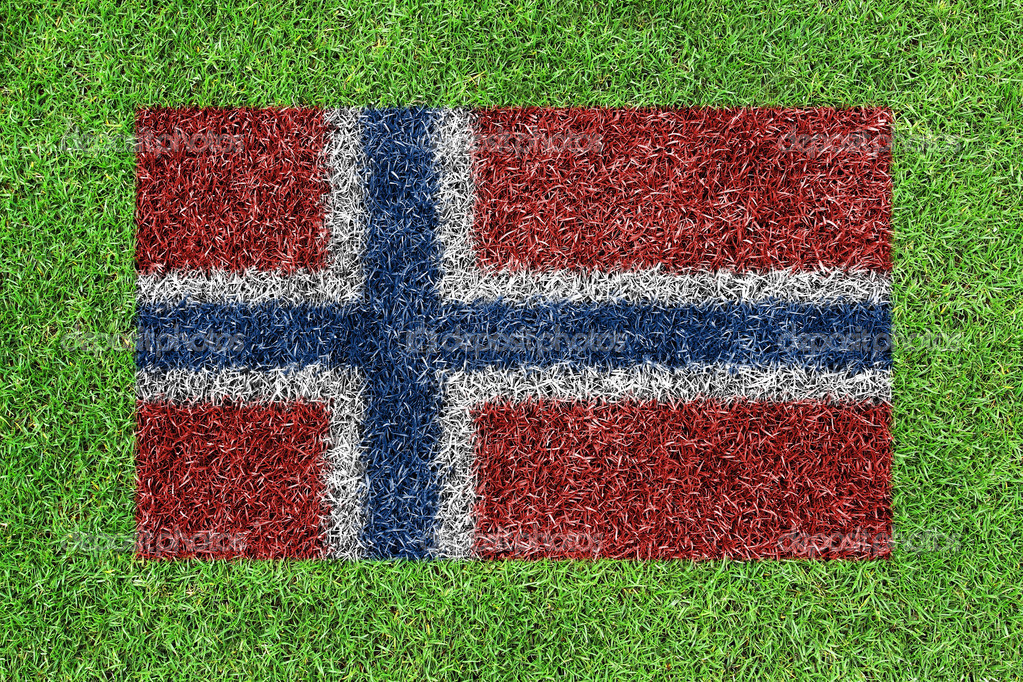 Flag of norway as a painting on green grass