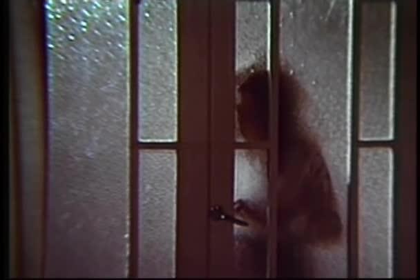 Schatten der Frau öffnet langsam Glastür