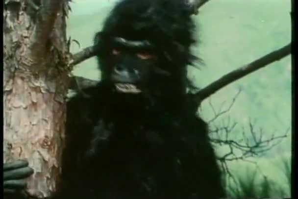 Man in gorilla suit going berserk in tree