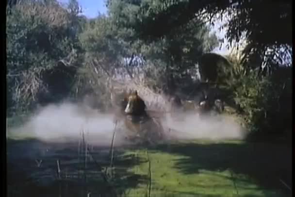 Ló húzott fedett kocsi átkelés folyó