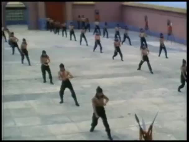 Men practicing martial arts in large courtyard