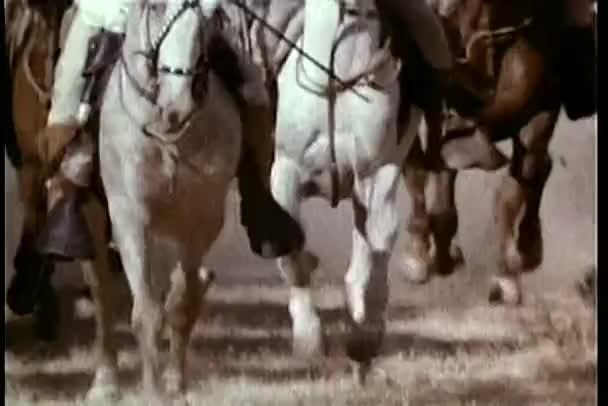 Alacsony szög kilátás vágtató lovak