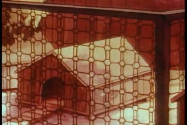 kreslený slepice sedí v kuřecí coop pletení