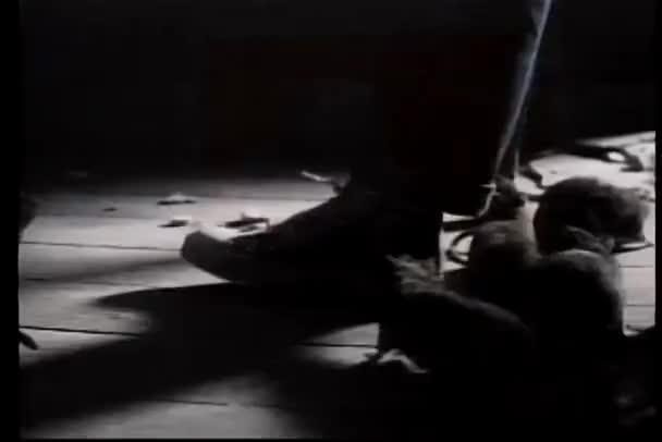 Ratas gateando pies en cuarto oscuro