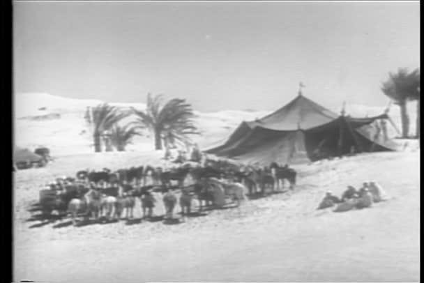 vojáci v kempu v Maroku
