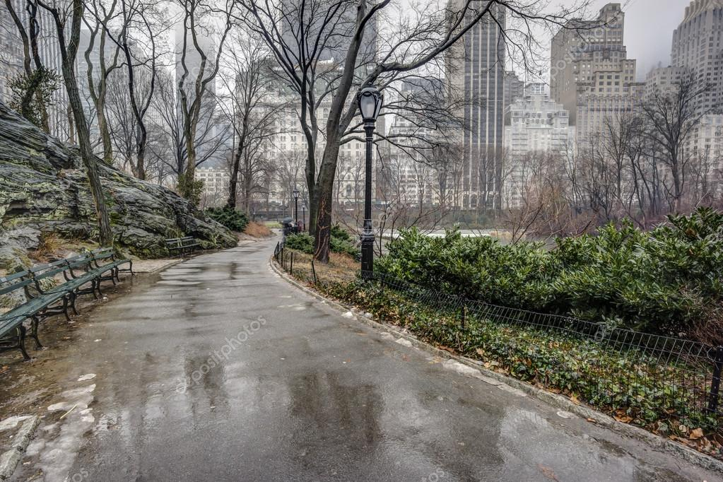 Central Park, New York City after rain storm