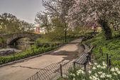 gapstow ponte di central park, new york city