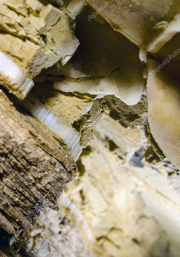 Selenite crystals in the gypsum cave